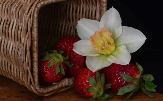 клубника, online, цветы, репродукция, сайте, корзины, baskets, рисунки, красивые, пазлов,