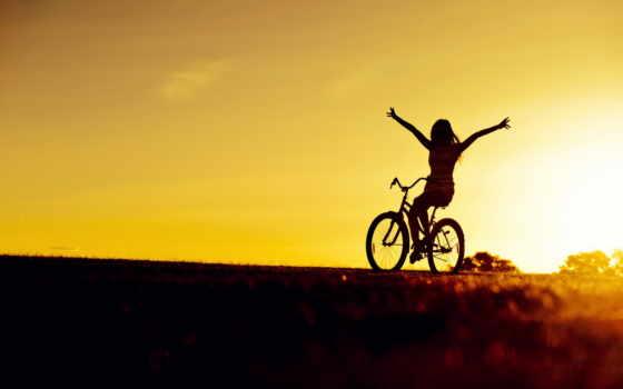bike, тайяны, сологуб,