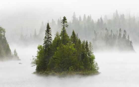 утро, если, утром, радуга, туманное, утра,