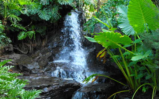 водопад, free, природа, widescreen, водопады, растительность, landscape,
