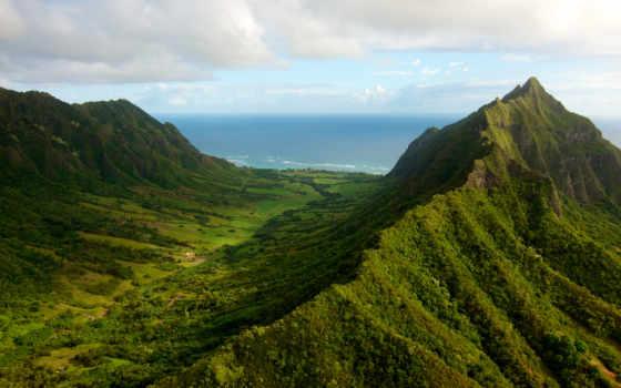 лес, горы, trees, трава, landscape, природа, зелёный, море, озеро, oblaka,