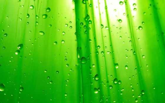 зелёный, капли, зеленые,