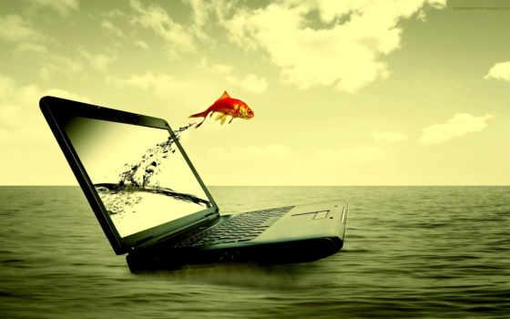 ноутбук, вода, рыбка, море, заработать, download, motion, ноутбука, прыжок, красивая, интернет, компьютер, рисунки, descargar, линда, resolution,