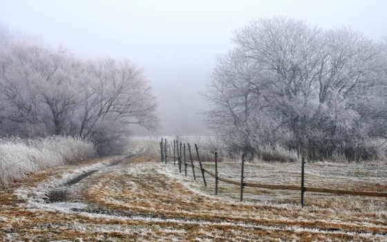поле, landscape, туман