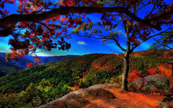 осень, золотая, левитан, trees, лес, синее, холмы, небо, landscape, свой, совершенно,