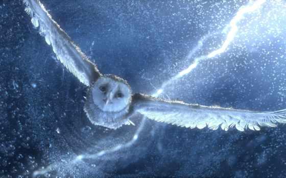 легенды, ночных, стражей, сказание, semi, морей, сова, графика, совы,