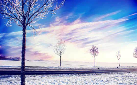 снег, winter, trees