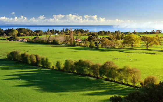 утро, деревне, природа, летнее, jpeg, кб, озеро, зимнее, поле,