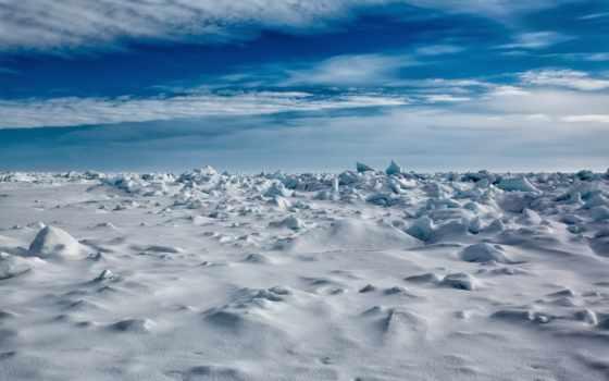 north, pole, arctic, году, экспедицию, россией, северному, северного,