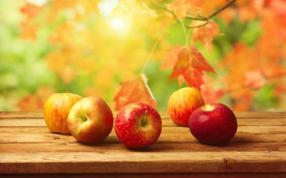 осень, яблоки, фрукты