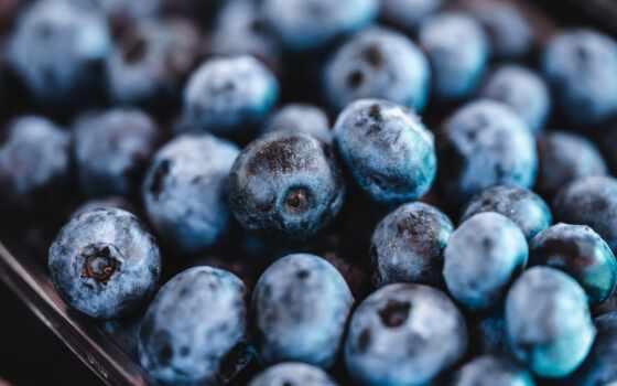 черника, еда, picjumbo, white, ворс, isolate, клубника, плод, фото, fresh, напиток