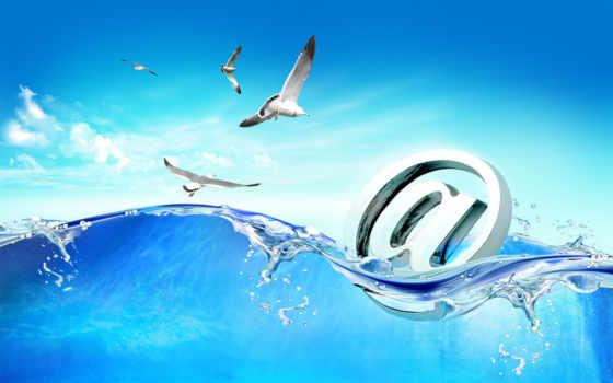 море, чайки, mail