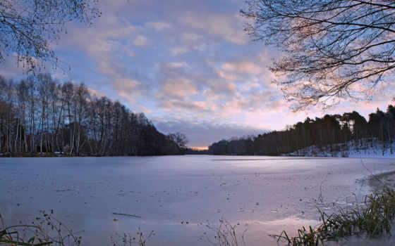 зима, деревья