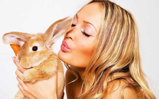 анимации, кролик, девушка, анимация, кролика, кролики, гиф, business, аллергия, гифки, кроликов,