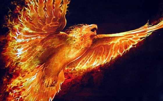 яndex, коллекциях, collections, коллекция, see, огонь, phoenix, tattoos,
