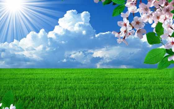 весна, солнце