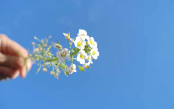 krasivo, blue, небо