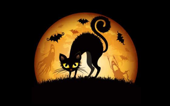 кот, коты, halloween, zhivotnye, картинка, witch, котенок, хэллоуина, ночь, поздравления, хэллоуинский,