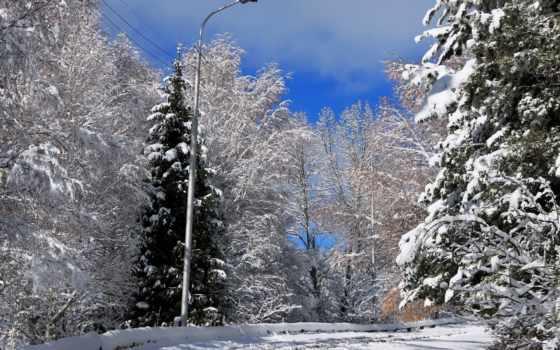 снег, дорога, winter