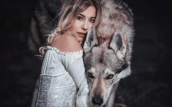 коллекция, волк, луна, max, shalyshkina, смотреть, user, viktorium, foll, другой