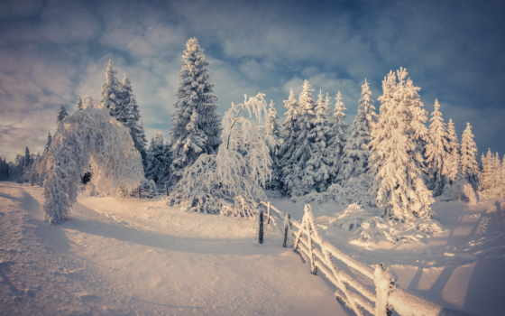 winter, снег, дней