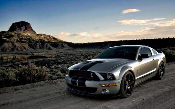 shelby, mustang, ford