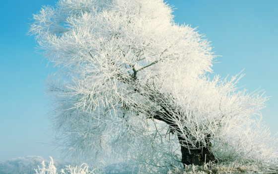 winter, русская,