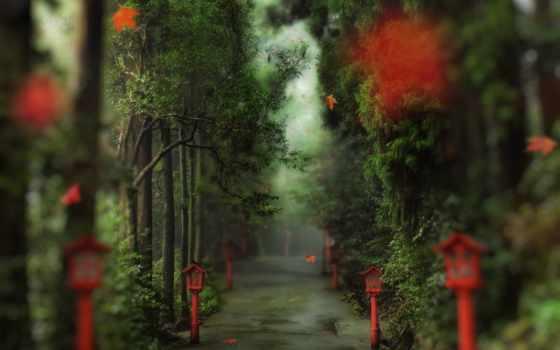 аллея, daler, осень, trees, park, лес, добавить, избранные, using, разделы, подразделы,