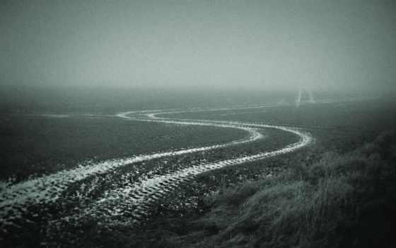 дорога, поле, осень, туман,