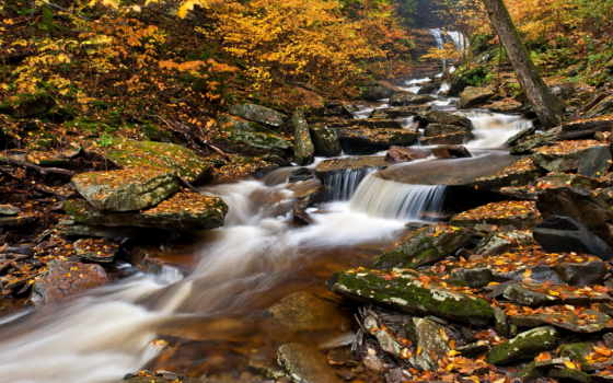 park, водопады, pennsylvania