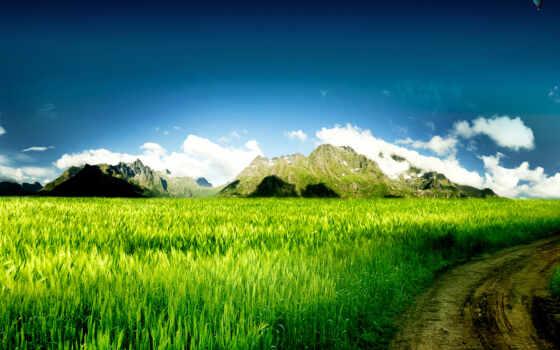 природа, красивая, природы Фон № 71212 разрешение 1600x1200