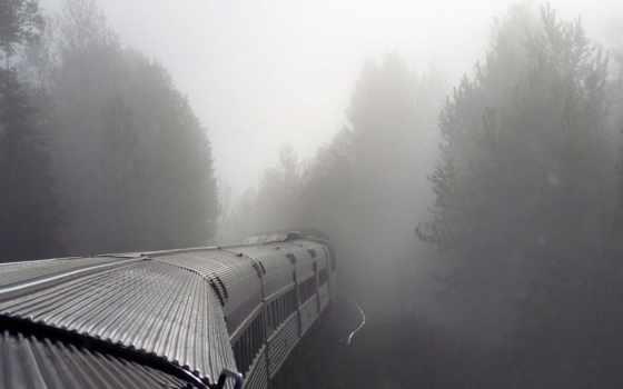 поезд, туман, лес, тумане, поезда,