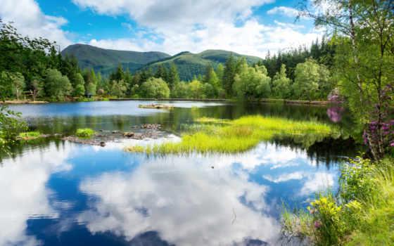 summer, красивые, природа, природы, озеро, landscape, летом, лес, года, картинка, time,
