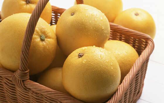 ,, фрукты, пища, цитрус, лимон, производить, грейпфрут, yuzu, цитрон,