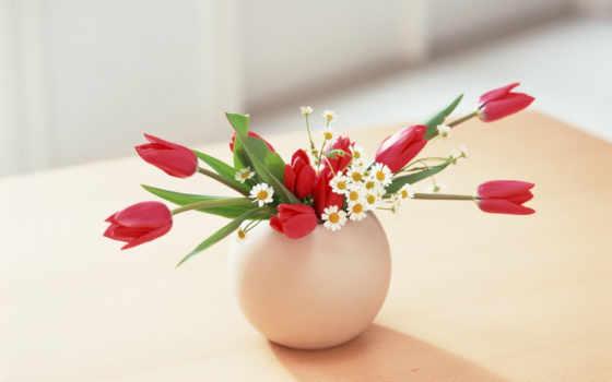 ,тюльпаны, картинка, ромашки, ваза, flower,,