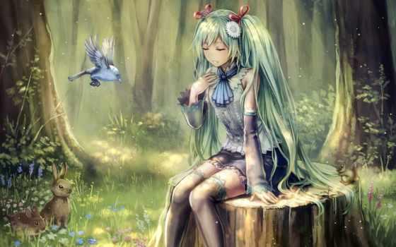 anime, лес, девушка, лесу, фотосессии, картинка, птицы, девушек, леса,