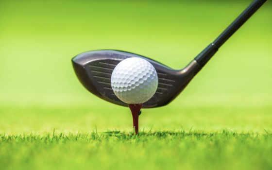 golf, спорт, stick, мяч, красивые, трава, cards, курс, гольфа,