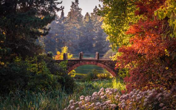 garden, berlin, botanical, german, природа, германия, парки, ogród, gardens,