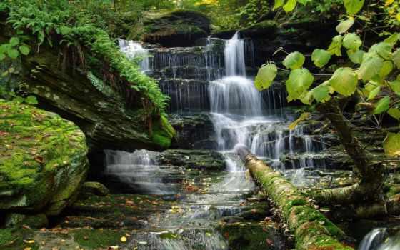 природа, водопад, trees, телефон, красивые, картинку, растительность,