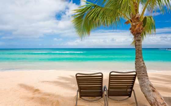пляж, море, пальмы Фон № 135439 разрешение 1920x1080