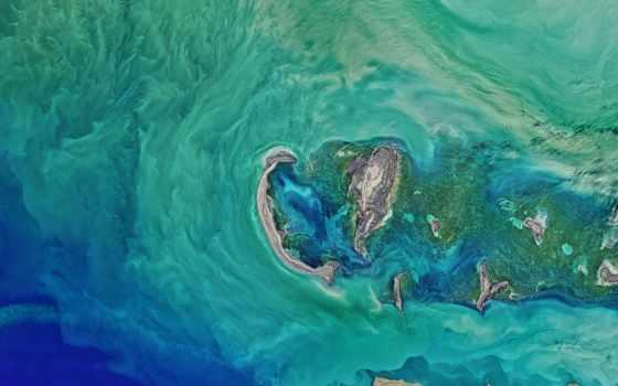 ,, вода, море, океан, бирюза, мир, волна,
