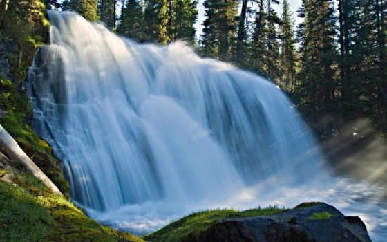 природа, водопад, лес Фон № 64765 разрешение 1920x1200