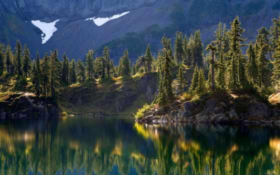 озеро, деревья