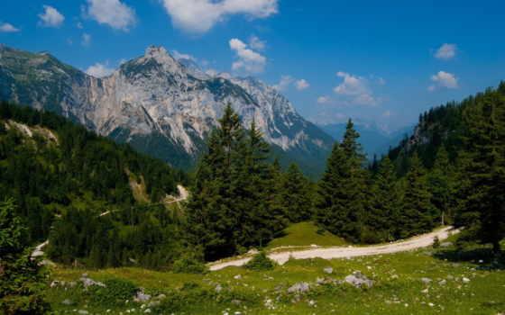 горы, лес, природа Фон № 80867 разрешение 1920x1080