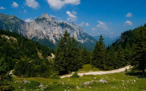 горы, лес, природа
