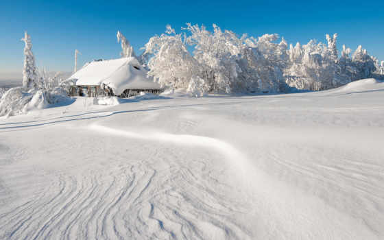 winter, сказочная, фотографа, зимы, владимира, чуприкова, настоящей, уже,