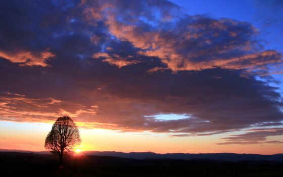 even, природа, облако, дерево