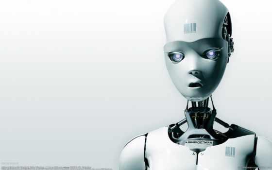 robot, robots, txt