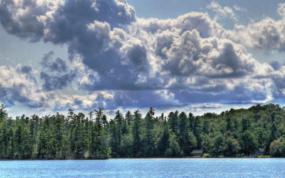 oblaka, небо, лес
