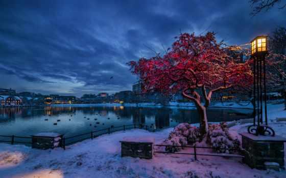 норвегия, winter, снег